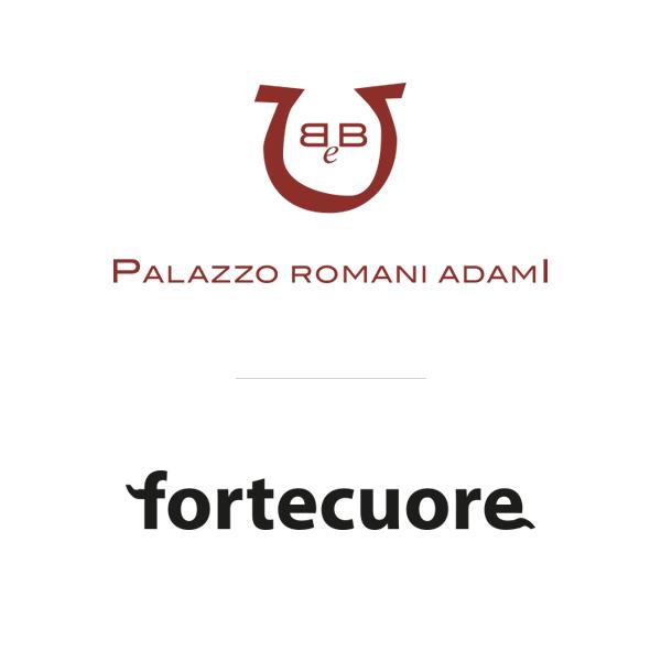 partners romaniadami - fortecuore